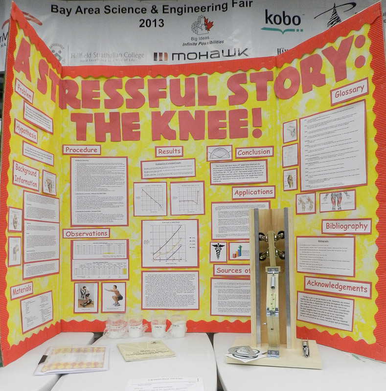 statistics science fair projects Virginialynne is an educator and mom of 5 her science fair articles are based on her experience helping her children do their projects in a time crunch need a.